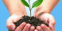 4-medio-ambiente-industria-servicios-infraestructuras